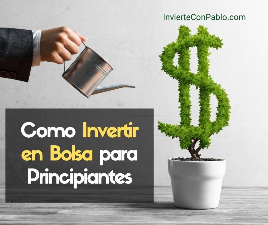 Como Invertir en Bolsa para Principiantes